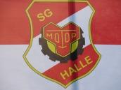 Halle5